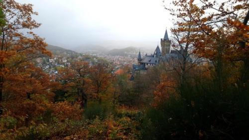 Sehenswürdigkeiten Harz Natur Burg Schloss Wandern