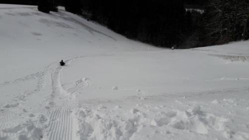 Winter HarzWintersport Schnee Wandern Schlitten Ski Langlauf Abfahrt Snowboard Liftanlagen Tofthaus Braunlage Wernigerode