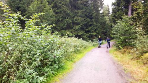 Aktion-Sport-Roller-Harz
