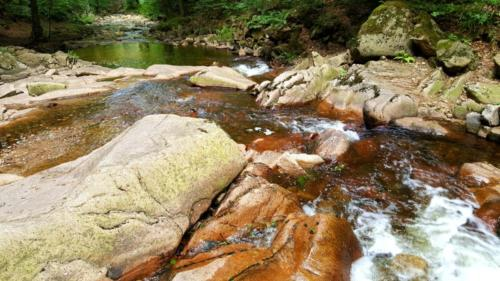 Baden-Harz-Quelle-Fluss-Sommer-Harz