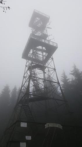 Sehenswuerdigkeiten-Harz-Natur-Aussichtsturm