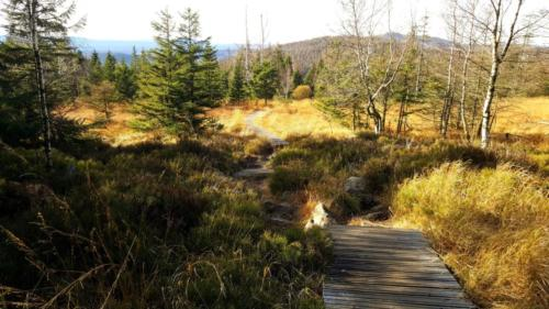 gefuehrt Touren Wanderung Harz Landschaft Ausblick Reisen